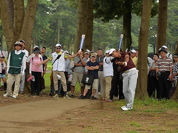 日本シニアオープン